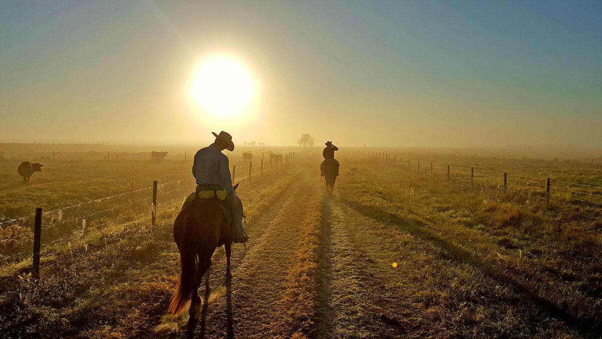 cowboy on Adams ranch riding at sunrise