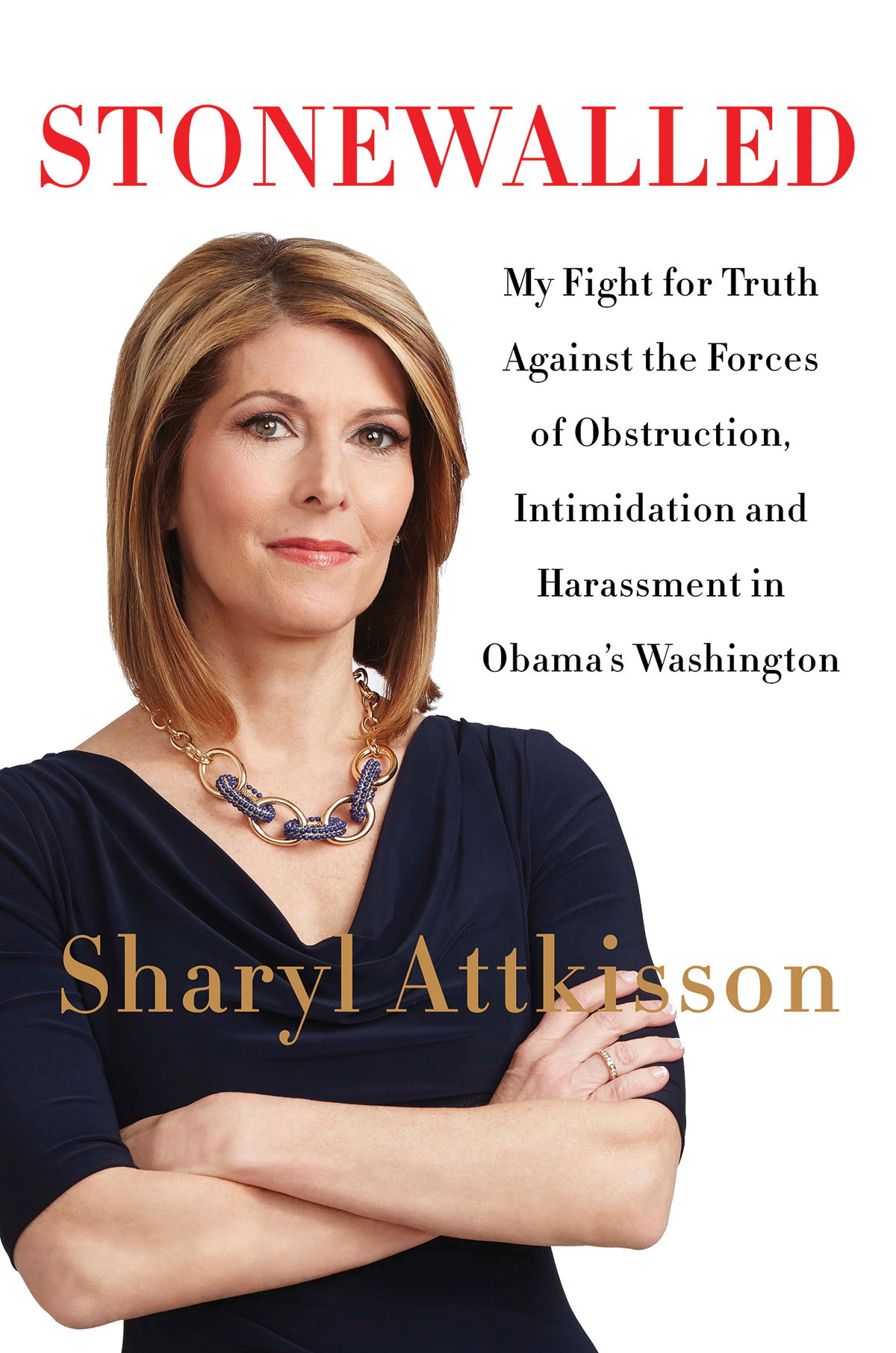 Stonewalled: My Fight for Truth Against the Forces of Obstruction, Intimidation and Harassment in Obama's Washington