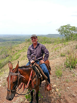 Ubilla explores land for new plantation areas by donkey in 2015.